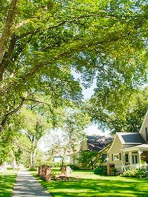 Brookings Residential District & Urban Arboretum