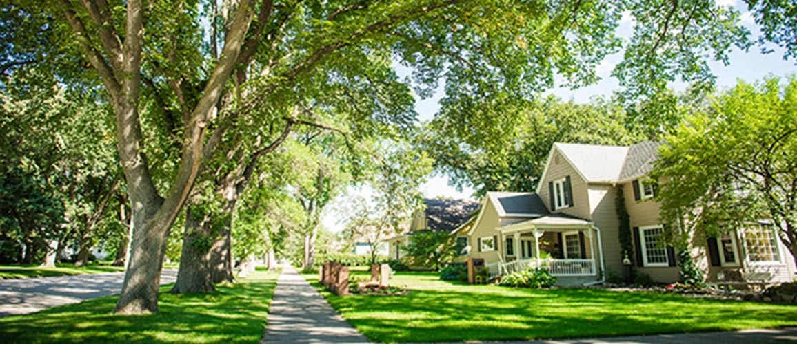 Brookings Residential Historic District Urban Arboretum